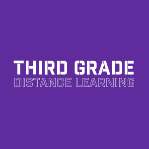 third grade  distance learning
